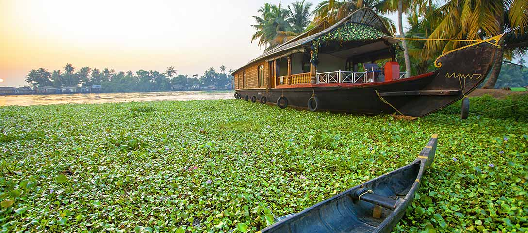 Things to Be Done During Kerala Trip