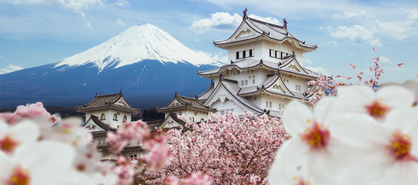 Top 15 Spots to Admire the Brilliant Japanese Cherry Blossom