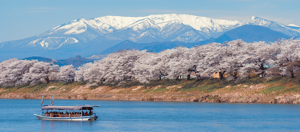Top 10 Uncommon Places in Japan for Cherry Blossom Viewing